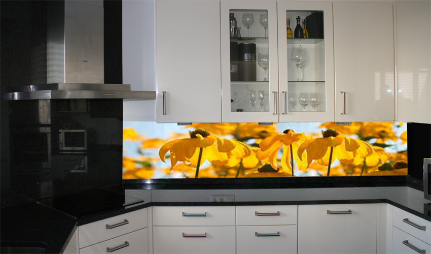 Bildergaleriebild for Küchen glaswand