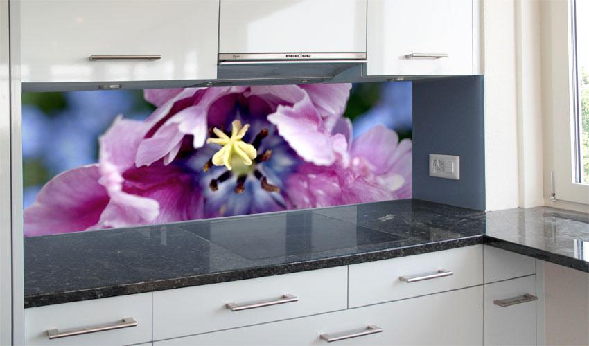 violette tulpenbl te dieses motiv eignet sich gut f r. Black Bedroom Furniture Sets. Home Design Ideas